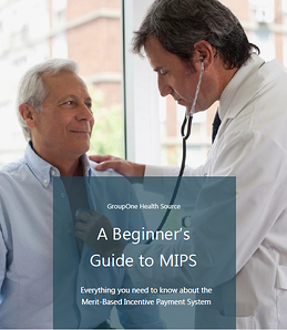 A Beginner's Guide to MIPS